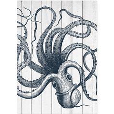 Americanflat Samantha Ranlet Wood Octopus Graphic Art