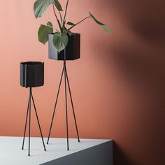 This large geometric plant pot is a stylish holder for plants or flowers. Crafted from powder coated metal with a matte finish, the interior is treated to avoid rusting. Place on your chosen surface, in our wall-mounted plant holder or freestanding plant stand to showcase the fruits of your green-fingered labour.  Available in a range of sizes and colours  Item no: 4178 Colour: Black Size: 13 x 12 cm Material: Powder Coated Metal Care instructions: Wipe with damp cloth