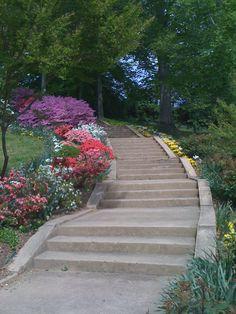 Book Hill Park, Georgetown, Washington, DC