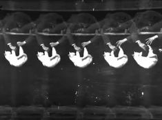 Falling Cat, Étienne-Jules Marey, 1894 Marey was a physiologist who studied movement through the use of photography.