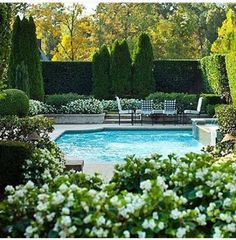 thefoodogatemyhomework: Simply lovely hedge garden and pool. thefoodogatemyhomework: Simply beautiful hedge garden and pool. Outdoor Rooms, Outdoor Gardens, Outdoor Living, Formal Gardens, Small Gardens, Outdoor Ideas, Beautiful Pools, Beautiful Gardens, Simply Beautiful