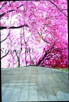 54.43$  Buy here - http://alibud.worldwells.pw/go.php?t=32278651111 - 250cmx450cm peach blossom around the country road background peach blossom props backdrops for photography