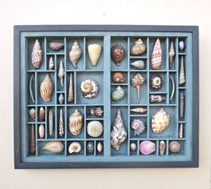 Art and collectible, mixed media collage, assemblage, sculpture, with colorful seashells, arranged within an altered printer's type  box .