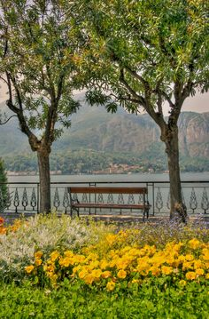 Lake Como, Lombardy, Italy by Alex Hill