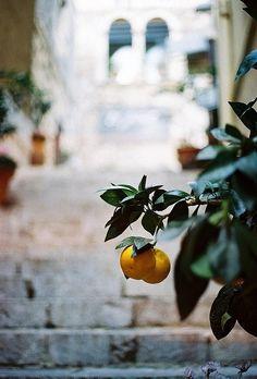 Sicilian steps - Taormina, Italy | by © Joe Boyle | via ysvoice