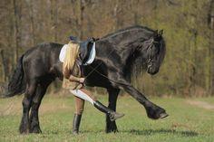 Princesa Sara e cavalo de fogo? rsss