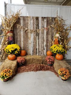Fall photo booth set up halloween backgrounds Theme Halloween, Fall Halloween, Halloween Mini Session, Halloween Backdrop, Halloween Pictures, Fall Festival Decorations, Fall Church Decorations, Harvest Party Decorations, Fall Festival Crafts