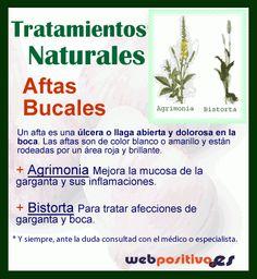 La información completa en http://webpositiva.es/org/blog/2013/tratamientos-naturales-llagas-aftas