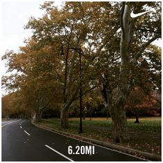 It's a yucky Sunday you can either be lazy or do something good for your body and mind  #garmin #nikeplus #CambridgeMA #fall #phdrunner #CharlesRiver #CambMa #poweredbyplants #instarunners #runmycity #Sunday #Vegan #veganrunner #plantbased #trees #October #instamood #rain #pegasus #fitfam by yaseminkg October 25 2015 at 08:02AM
