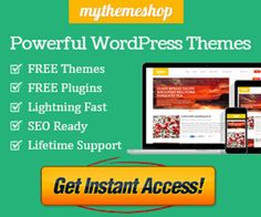 Best WordPress Theme for SEO and Mobile Sites