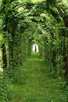 Linderhof Castle repinned via @MyHighestSelfBlog.com