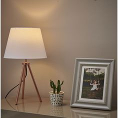 Shop for Wilko Rose Gold Tripod Lamp at wilko - where we offer a range of home and leisure goods at great prices. E14 Led, Living Room Cabinets, Stationery Craft, Contemporary Lamps, Tripod Lamp, Business For Kids, Girls Bedroom, Light Up, Home Accessories