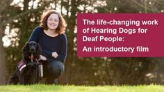The life-changing work of Hearing Dogs for Deaf People Deaf People, Deaf Culture, Health Education, The Life, Life Changing, Make Me Smile, Encouragement, News, Animal