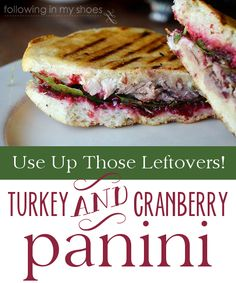 Turkey and Cranberry Panini --- use those Thanksgiving leftovers!