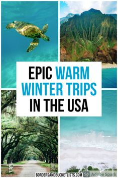 11 Best Warm Winter Vacations in the USA | Borders & Bucket Lists warm winter getaways in the us, warm winter trips in the us, warm winter vacations in the USA, winter trips usa, winter trips in the united states, winter trips in us, winter trips in California, warm trips in winter, winter vacation ideas united states, winter vacations in the us, winter vacation ideas, winter destinations in the us, warm destinations in winter, warm winter destinations in the us #winter #travel #usa