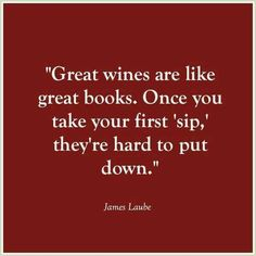 My perfect Sunday night! Great book and great wine! Not to mention the great guy sitting next to me! Don't tell Dan. Wine Meme, Wine Down, Wine Signs, Coffee Wine, Wine Quotes, Bar Quotes, Wine And Beer, Wine And Spirits, Fine Wine