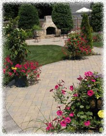 Landscape Design Ideas    Color!! Do it yourself landcaping.