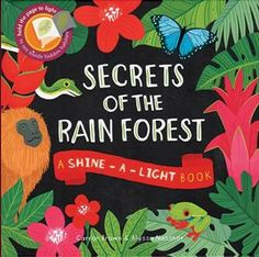 secrets of the rainforest