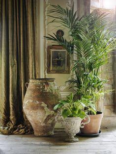 urban jungle. love this  plant arrangement and the antique planters mi piace la disposizione di questi vasi vintage #plant #vintage #planters