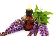 Clary Sage Oil, Sage Oil benefits & uses, Clary Sage Oil manufacturers, bulk exporters India, pure Indian Sage Oil, wholesale Sage Oil. Read More at http://www.aosproduct.com/product-clary-sage-oil.html