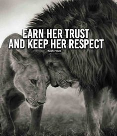 Funny Pictures, Picdumps, Funny Animals, Quotes, Gift Ideas and more. Positive Quotes, Motivational Quotes, Inspirational Quotes, Positive Vibes, Favorite Quotes, Best Quotes, Daily Quotes, Lion Quotes, Lion Love