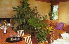 SUCCESS WITH HOUSE PLANTS | Reader's Digest ©1979