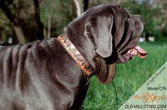 Handmade Leather Dog Collar for Mastiff