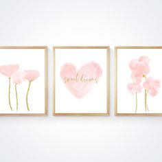 Sweet Dreams Nursery Prints for Blush and Gold Baby Nursery Gold Baby Nursery, Gold Nursery Decor, Blush Nursery, Nursery Frames, Nursery Prints, Girl Nursery, Nursery Room, Nursery Ideas, Blush Flowers