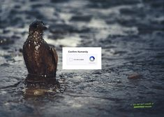 Greenpeace Wants You To 'Confirm Your Humanity' In Thought-Provoking Campaign - DesignTAXI.com