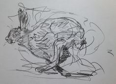 'Running Hare' by Stephen Vicary© Carbon Pencil on Paper 2013