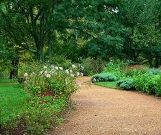 12 Amazing Garden Path Ideas To Consider - Garden Path Ideas: Gravel Path - Gravel Walkway, Outdoor Walkway, Pea Gravel, Diy Garden, Lawn And Garden, Garden Landscaping, Garden Ideas, Path Design, Garden Design