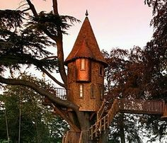I want this treehouse.