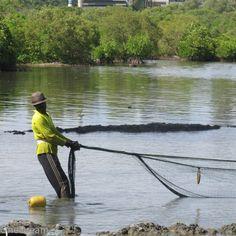 Fisherman in Trincomalee