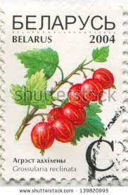 Belarus Stamp 2004