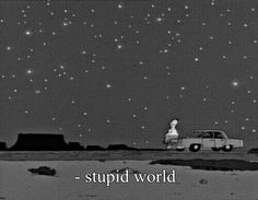 Stupid world!
