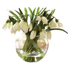Bloom Snowdrop Arrangement Artificial Flower Spring Decoration Plant... (52 BRL) ❤ liked on Polyvore featuring home, home decor, floral decor, flowers, filler, flower arrangement, artificial silk flowers, silk flower bouquets, faux flower arrangement and spring flower arrangement