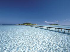 JAL - 絶景コレクション:モルディブ 青い海と桟橋(JAL旅プラスなび)