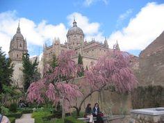 Salamanca#World heritage
