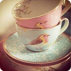 Bird on a tea cup