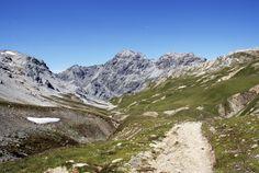 Stelvio National Park - A nature trail in Val Grande  http://lombardiaparchi.proedi.it/parco-nazionale-dello-stelvio-2/?lang=en