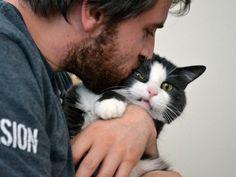 cats that don't want to cuddle