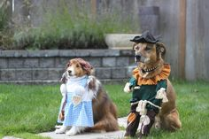 """https://flic.kr/p/aAHCBt 