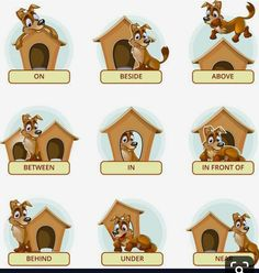 Buy Cartoon Dog In Different Poses To Illustrate by on GraphicRiver. Cartoon dog in different poses to illustrate English prepositions of place. Vector illustration for preschool kids. Grammar For Kids, Teaching English Grammar, English Worksheets For Kids, English Activities, English Language Learning, Kids Learning Activities, Teaching Resources, Learning English For Kids, English Lessons For Kids