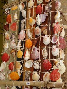 Cuadro decorativo con caracoles de mar