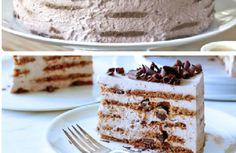 Torta semifreddo biscotti e crema golosa, la ricetta senza cottura
