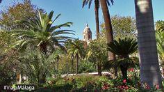 Entre sus grandiosos árboles se deja entrever los edificios emblemáticos de la ciudad.