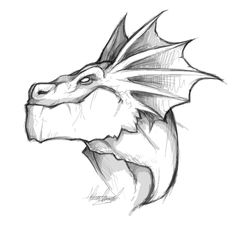 dragon__s_face_by_alessandelpho-d3bkhhj.jpg (1200×1162)