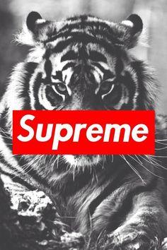 supreme iphone wallpaper Tumblr