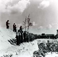 Bergen Belsen, Germany, SS soldiers standing in line next to a mass grave, after the liberation of the camp, April 1945.