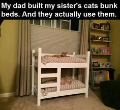 My furry kids need this. But we would first need to convince them that they belong to my daughters!